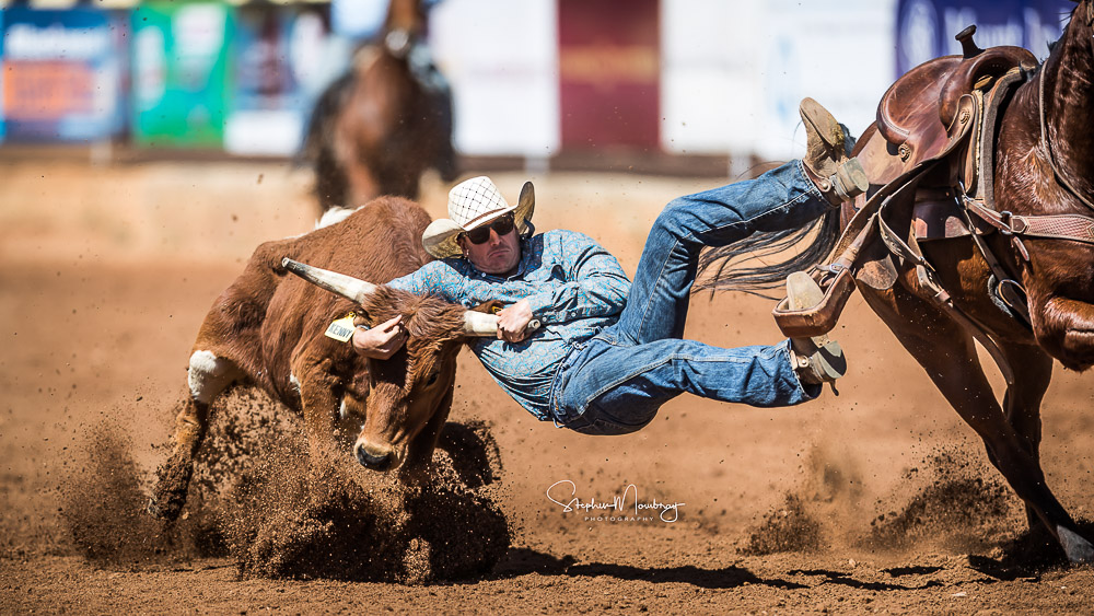 MI920241-Cody Schaefer stops the clock in 7.00 secs flat in section 2 of the Steer Wrestling competition