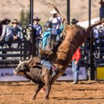 Troy Wilkinson marks 83.50pts on board 'Forever Amen' to make it three from three to be the 2021 Mount Isa Mines Bull Ride Champion