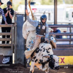 Koumala Cowboy Btrn Francs marks75 pts to take an early lead after the first section of the 2nd Divi Bull Ride