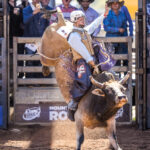 Normanton Cowboy Eli Toby marks 72pts to be second in the first section of the Paradise Outdoor Advertising 2nd Divi Bull Ride
