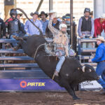 Collinsville Cowboy Guy Hall in action in the Paradise Outdoor Advertsing Junior 2nd Divi Bull Ride