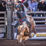 Koumala Cowboy Qynn Anderson marks 70pts to place third in the first section of the 2nd Divi Bull Ride