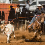 Emerld Cowgirl Angela Simpson on board her 13yo gelding 'Tuff' stop the clock in 2.75 secs to take the lead after section 3 of the  Ariat Australia Ladies Breakaway Roping contest