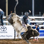 Lachlan Richardson marks 81.50pts to split third place on 'Ariats Ol Son' in the first section of the Mount Isa Mines Bull Ride