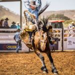 Tumut Cowboy Tom Kerr on board 'Wish List' in section 2 of the Tourism and Events Queensland Open Saddle Bronc contest