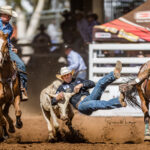 Charters Towers Cowboy Ryley Gibb puts down a 4.45 sec un to take the lead in the DD Group International Steer Wrestling contest