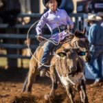 Sharon McGuire and her 5yo gelding 'Whiskey' stop the clock in 5.90 secs to be third in the first section of the Ariat Australia Ladies Breakaway Roping contest
