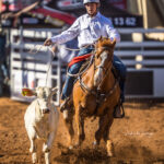 Mount Isa Cowboy Cordel Gosbee and 'Christy's Sylish' get their Junior Breakawat campaign underway with a 5.40 sec run for second place in the first section