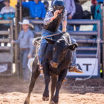 Rockhampton Cowboy Nash Cameron marks 62pts to place third in the 1st section of the Mount Isa Mining Supplies Junior Steer Ride