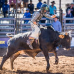 USED MI112721-Augathella Cowboy Alex Creevy marks 64pt to place third in the 1st section of the Mount Isa Mining Supplies Junior Steer Ride