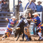 Corey McCoy gets hung up in the Junior Bull Ride, but the fearless three are on hand to keep him safe