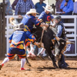 Corey McCoy gets hung up in the Junior Bull Ride, but the fearless three are on hand to keep himsafe